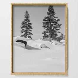 Tahoe Winter Serving Tray