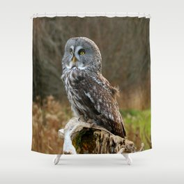 Waiting for night to fall Shower Curtain