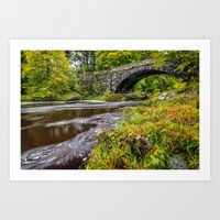 beaver Art Prints featuring Beaver Bridge by Adrian Evans
