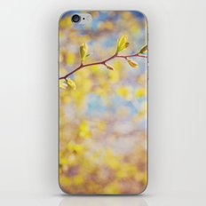 Spring Has Sprung iPhone & iPod Skin