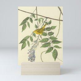 Blue-eyed Yellow Warbler by AUDUBON Mini Art Print