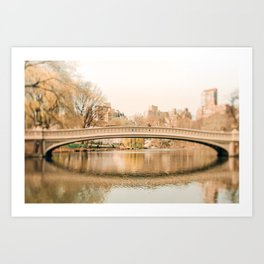 Springtime In New York Art Print