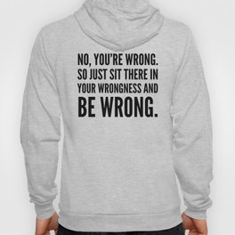 NO, YOU'RE WRONG. SO JUST SIT THERE IN YOUR WRONGNESS AND BE WRONG. Hoody