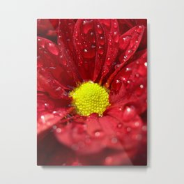 wet bloom I Metal Print