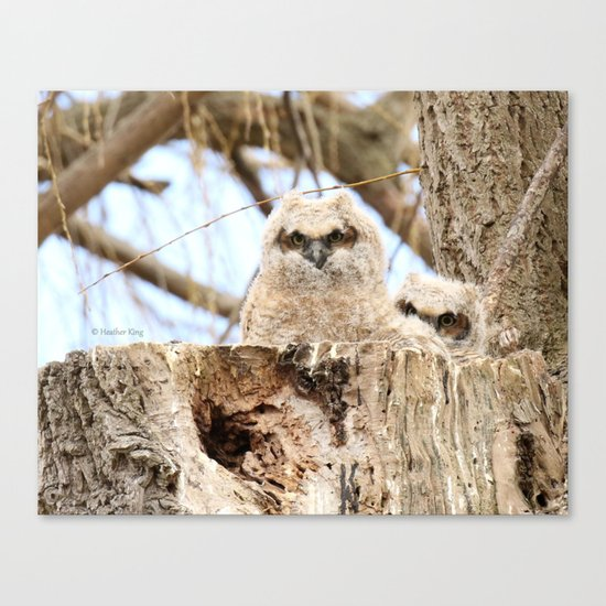 Sibling Espionage Canvas Print