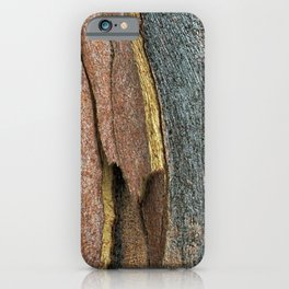 Eucalyptus Tree Bark and Wood Abstract Natural Texture 42 iPhone Case