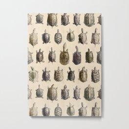Vintage Turtles Pattern Metal Print