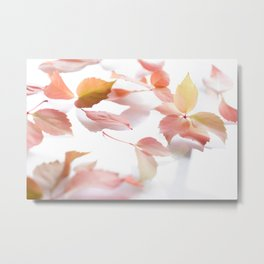 Flower Photography by Metis Designer Metal Print
