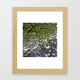 Green & Gray Pebbles Framed Art Print