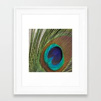 peacock feather Framed Art Prints featuring Peacock Feather by aquenne