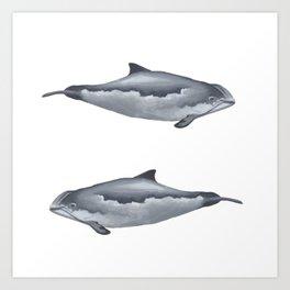 Harbour Porpoises Art Print