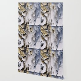 Caveman Wallpaper