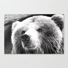 A curious mind Canvas Print