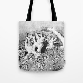 Transitions in nature part 3 Tote Bag