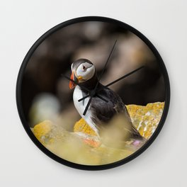 Puffin from Ireland (RR 284) Wall Clock