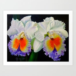 Hawaiian Orchids Art Print