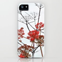 WILDFLOWERS in RED iPhone Case