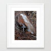mushroom Framed Art Prints featuring Mushroom by aeolia