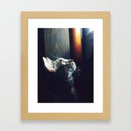 flight envy Framed Art Print