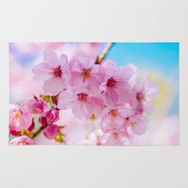 Sakura 07 Rug