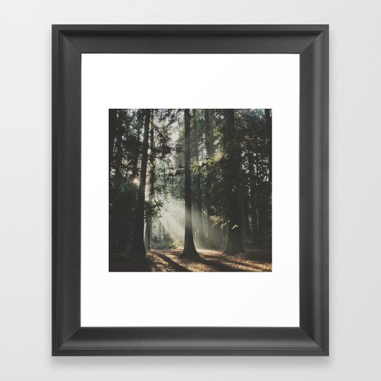 Sunbeam Woods Framed Art Print