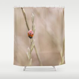 Ladybug in the grass Shower Curtain
