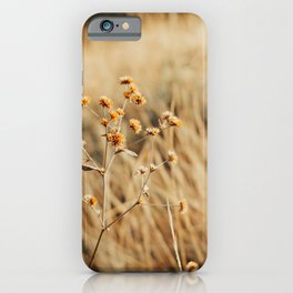 Dried Grass field Photography iPhone Case