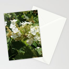 Sweetest Memories Stationery Cards
