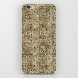 Egyptian Hieroglyphics iPhone Skin