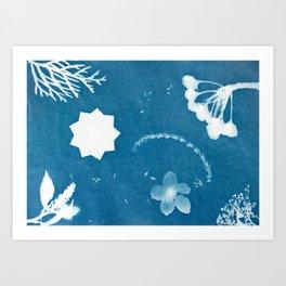 Sunprint - 9 Pointed Stars (2) Art Print