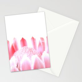 Pink Pink Protea Stationery Cards