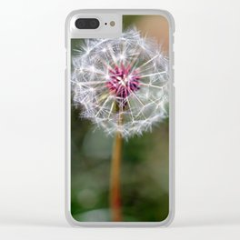 Dandelion Seed Head Clear iPhone Case