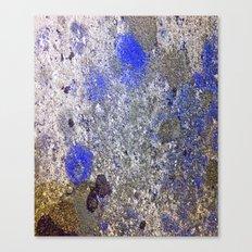 Blue Moss Canvas Print