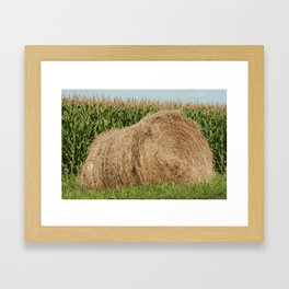 Hay Bale and Corn Field Framed Art Print
