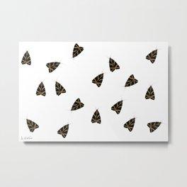 Euplagia quadripunctaria Metal Print