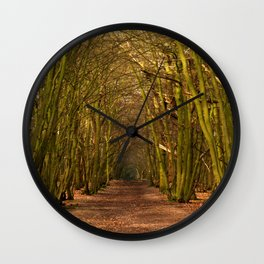 Mysterious Path Wall Clock
