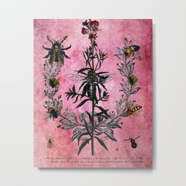 Vintage Bees with Toadflax Botanical illustration collage Metal Print