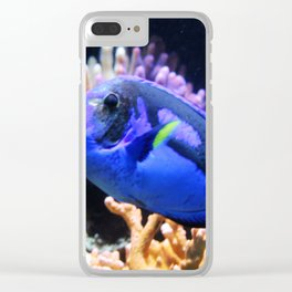 Blue Hippo Tang Clear iPhone Case