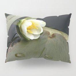 Zen Water Lily Pillow Sham
