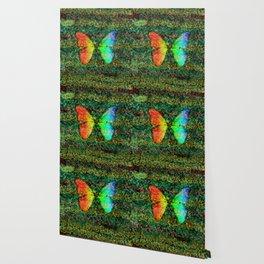 Butterfly Rainbow Wallpaper