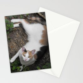 Endora Stationery Cards