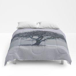 Ancient Tree Comforters