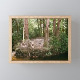 rope swing Framed Mini Art Print