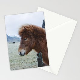 Brown Horse in Iceland Stationery Cards