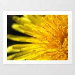 *Sun Burst Art Print
