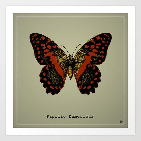 Papilio Demodocus Art Print