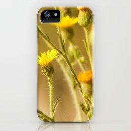 Yellows&Oranges iPhone Case