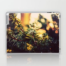 Evergreen Frost Laptop & iPad Skin