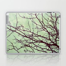 December Laptop & iPad Skin