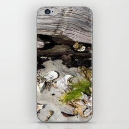 Beach Scene iPhone Skin